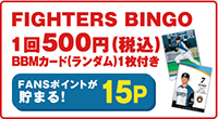 FIGHTERS BINGO